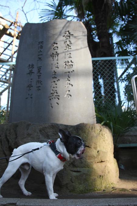 gosuke0304_004.jpg