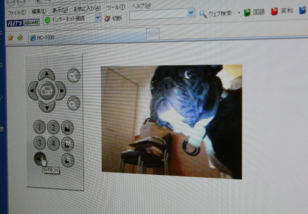 gosuke0411_005.jpg