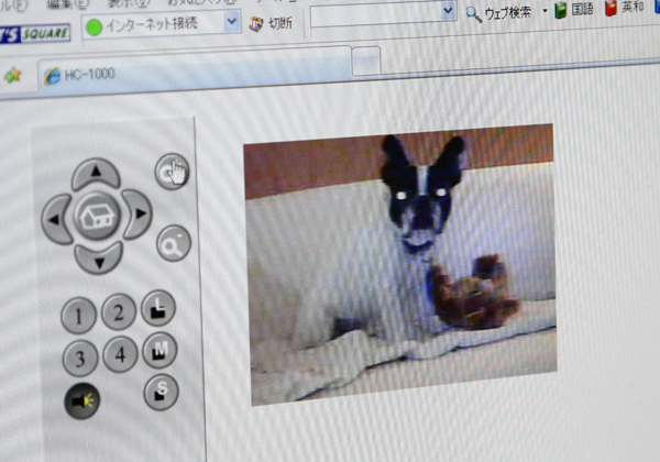 gosuke0411_006.jpg
