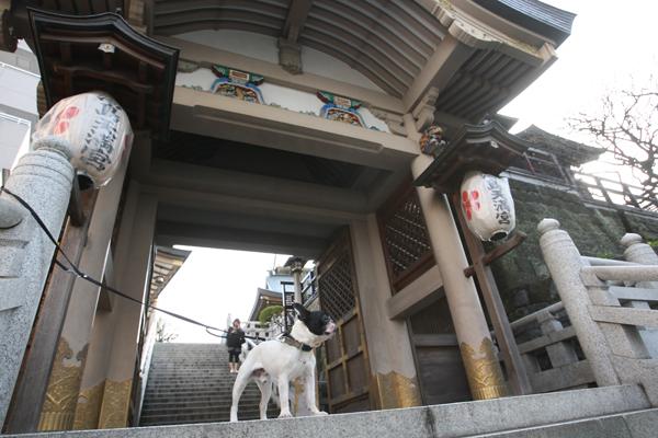 gosuke0508_004.jpg
