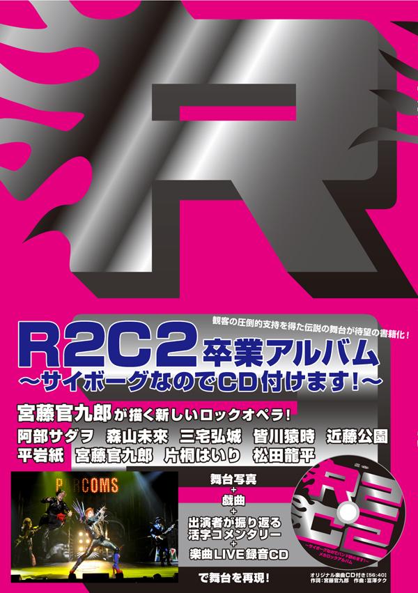 100208_R2C2.jpg