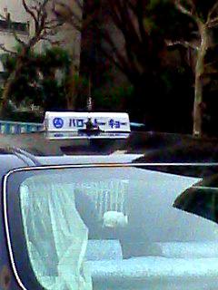 100318_taxi.jpg