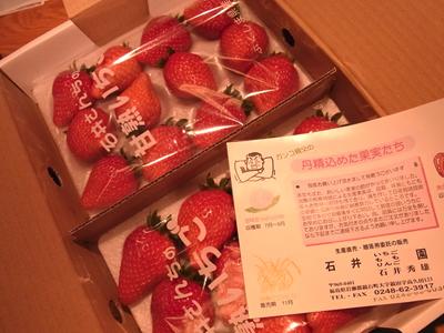 110203ichigo.jpg