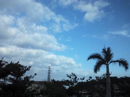 130120_okinawa1.jpg