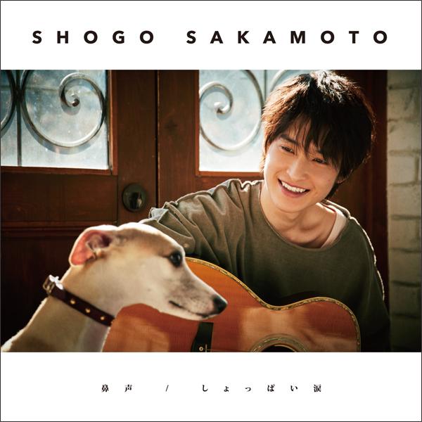 SAKAMOTO_H1_shokai.jpg